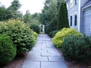 Summer gardens and walkways